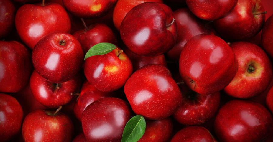 recetas de manzanas