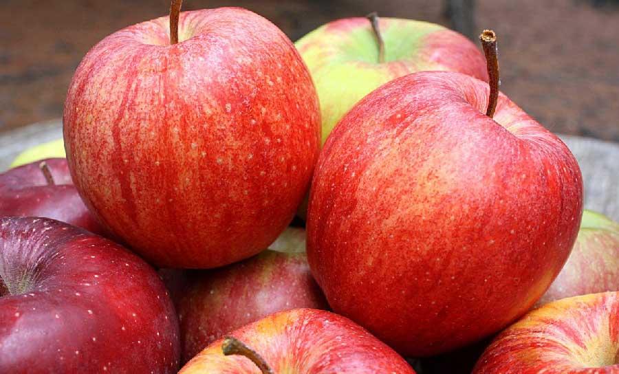 manzana Cameo