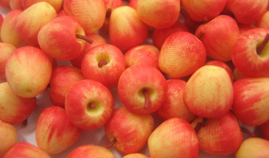 manzanas galas